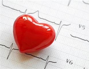 Researchers provide a list of genes implicated in congenital heart disease