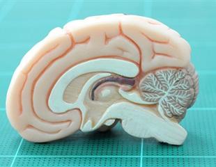 Genetically encoded sensor helps detect hallucinogenic substances