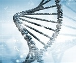 Shortage of DNA building blocks triggers inflammation