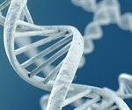 Unusual DNA folding leads to higher mutation rates