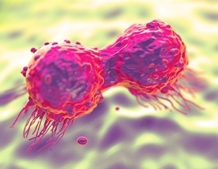 New knowledge on cancer's own intelligence