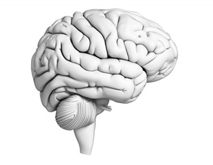 New technology offers an alternative way to produce highly detailed images of the brain