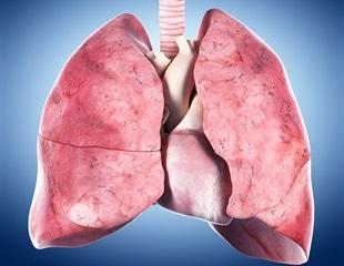 Study reveals how coronavirus aerosols flow through the lower lungs