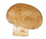 Researchers use DNA barcoding to authenticate 'wild mushrooms' in food products