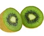 Gaps in understanding kiwi genetics hinder conservation efforts