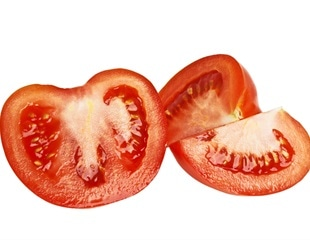 Pest attacks trigger defensive electrical and biochemical responses across tomato plants