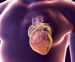 Researchers analyze individual cells to build an atlas of the human heart