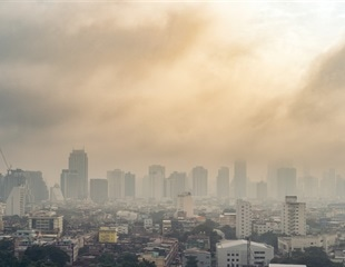 Air pollution may increase chance of hospitalization for COVID-19 patients