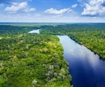 40 Percent Of Amazon Could Now Exist As Rainforest Or Savanna-Like Ecosystems
