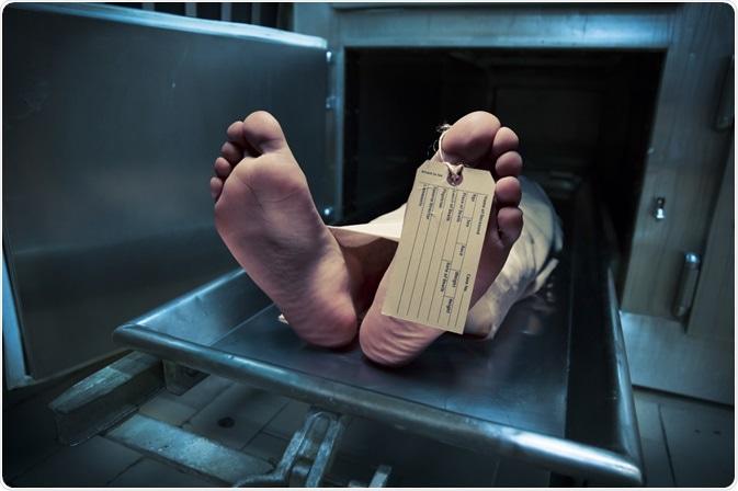 Person at Morgue
