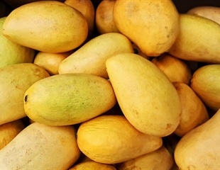 Mango consumption can reduce facial wrinkles in older women
