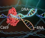 Could CRISPR be used to Create New Species?