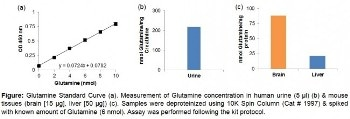 BioVision Glutamine Colorimetric Assay Kit