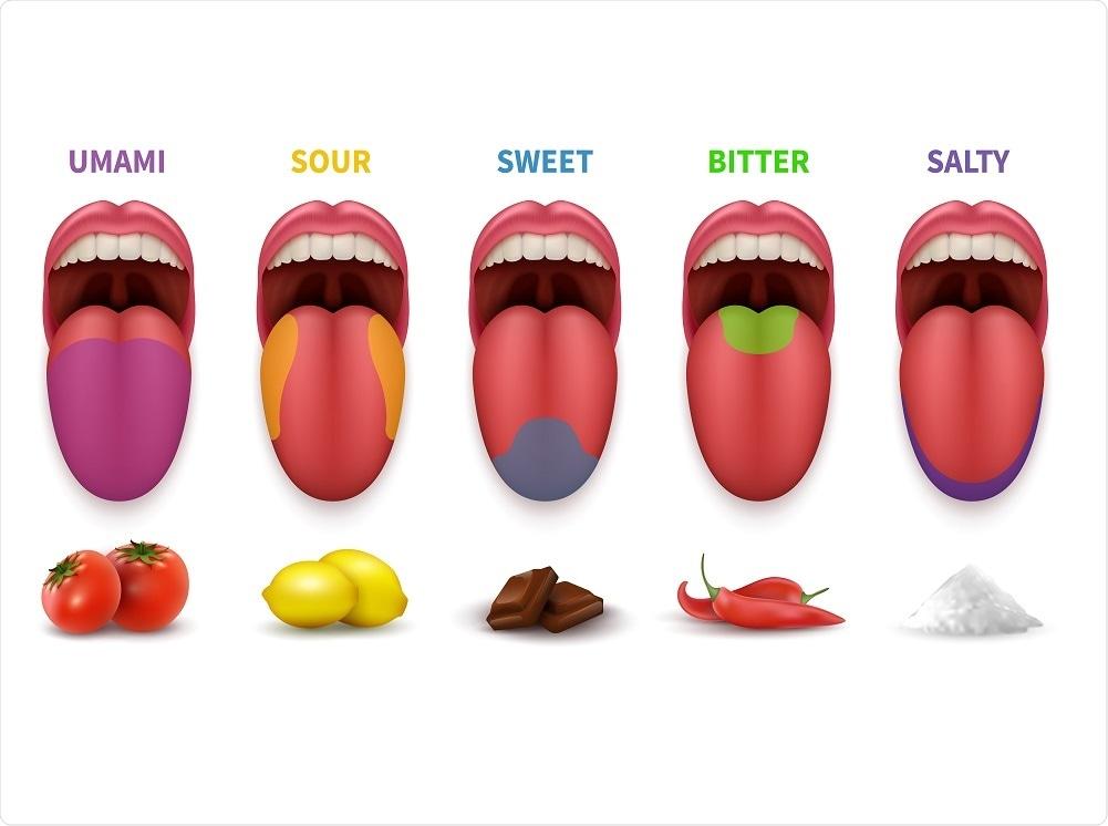 Taste Areas