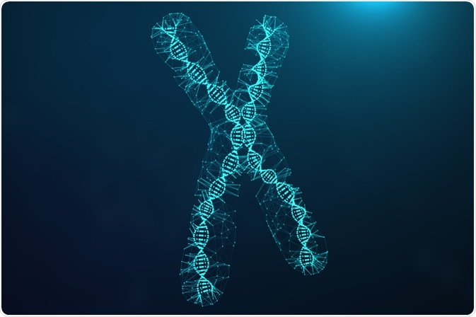 Artificial Chromosome