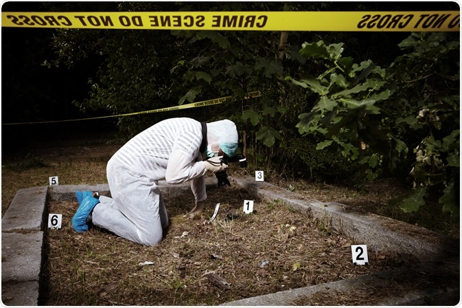 Forensic Examination