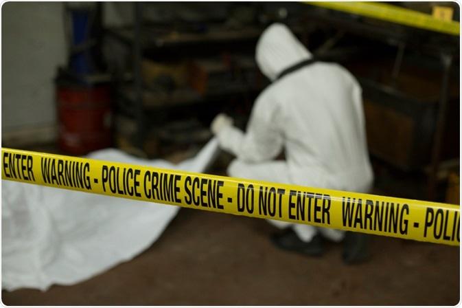 Forensic Scene