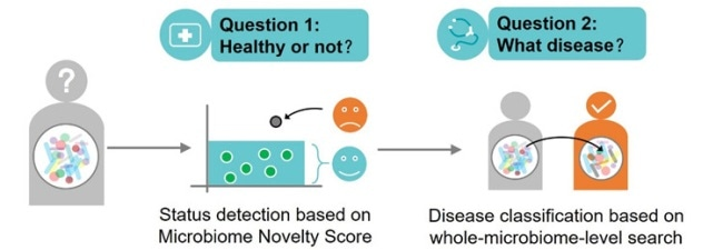 Using microbiome search to detect and classify multiple diseases across cohorts