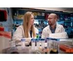 Epigenetic controls of T cells can help treat Type 1 diabetes