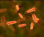 Fecal Transplantation Improves Outcomes In Patients With Multi-Drug Resistant Organisms