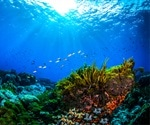 Coastal Pollution Reduces Genetic Diversity Of Corals