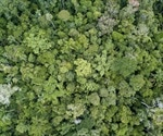 Climate Change Could Cause Sudden Biodiversity Losses Worldwide