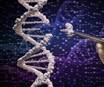 A Step Toward A Better Way To Make Gene Therapies To Attack Cancer, Genetic Disorders