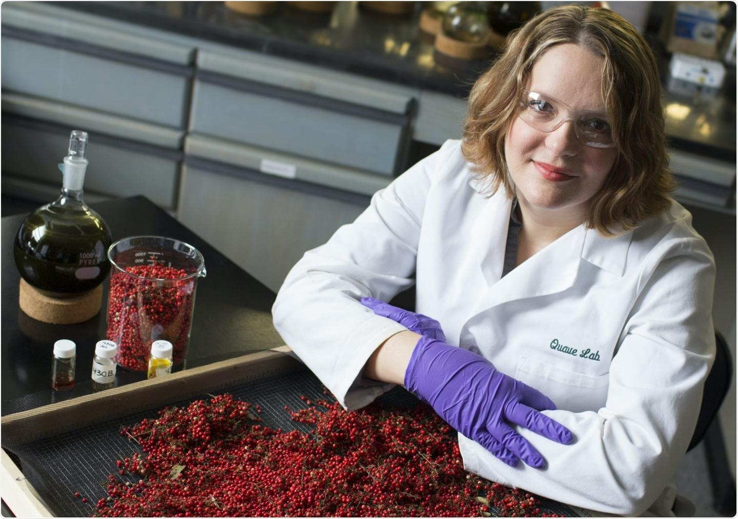 Compounds in Brazilian shrub can reduce the virulence of antibiotic-resistant bacteria