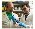 Study shows how ocean virus captures the metabolism of carbon-storing bacteria