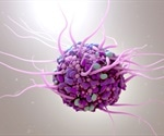 Direct Control Of Dendritic Cells For Tracking And Immune Modulation