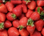 Whole Strawberries Studied For Their Anti-Inflammatory Benefits