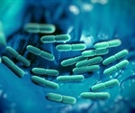 Study finds strong link between fermented foods and the gut microbiome