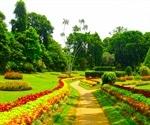 Study Helps Arboreta, Botanical Gardens Meet Genetic Diversity Conservation Goals