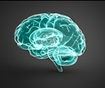 Study shows promise for treating developmental and epileptic brain disease