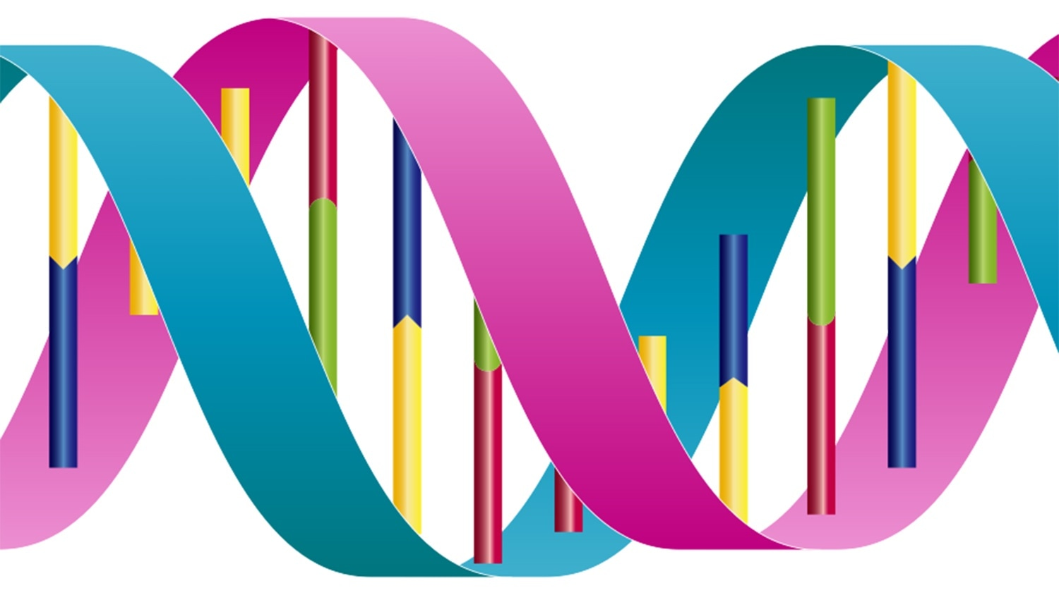 Study shows how proteins prevent DNA replication errors