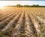 A Guide to Improving Crop Production in Dry Climates