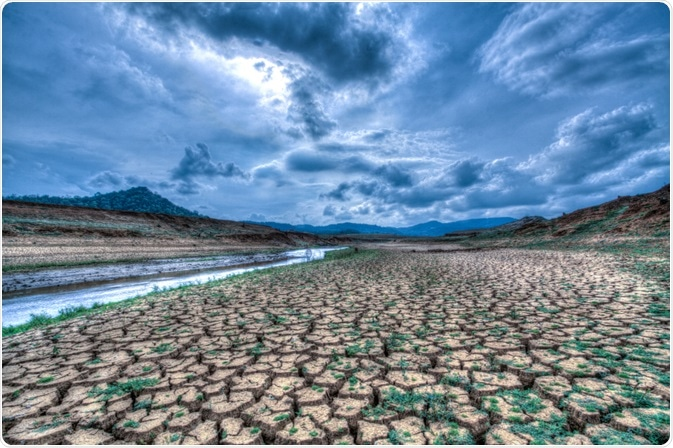 Climate change on land