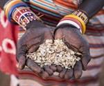 Understanding Environmental Change Through Indigenous People