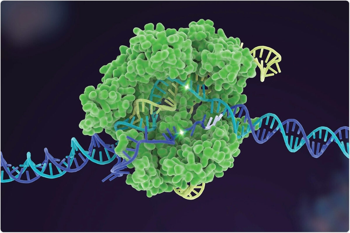 Novel tool helps select the best gene-editing option