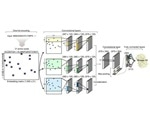 New deep neural network predicts transcription factors from protein sequences