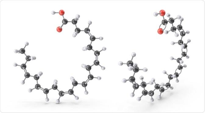 Zwitterion Molecule