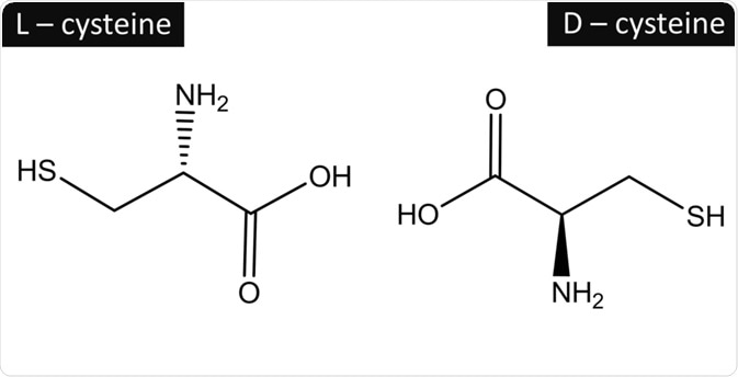 L and D Isomers