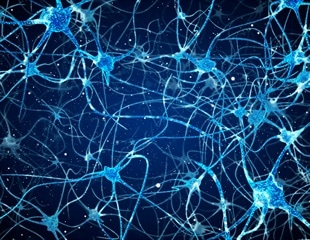 Gene therapy turns glial brain cells into neurons, restores visual function