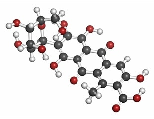 Study provides novel insights into the breakdown of carminic acid