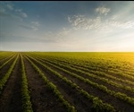 Digital Drone: New Technology to Improve Crop Yields
