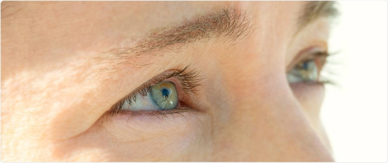 Protein imbalance leads to cataract