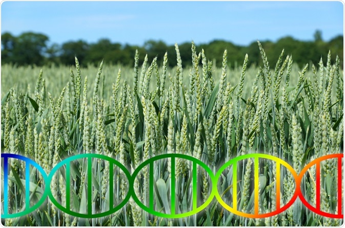 Crops and Genetics