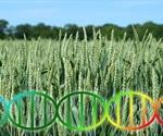 Improving Crop Yields using Genetics