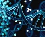 DNA Methylation in Cancer