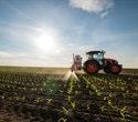 Reducing Pesticide Use in Agriculture